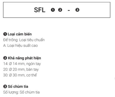 Thông tin đặt hàng Cảm biến an toàn SFL